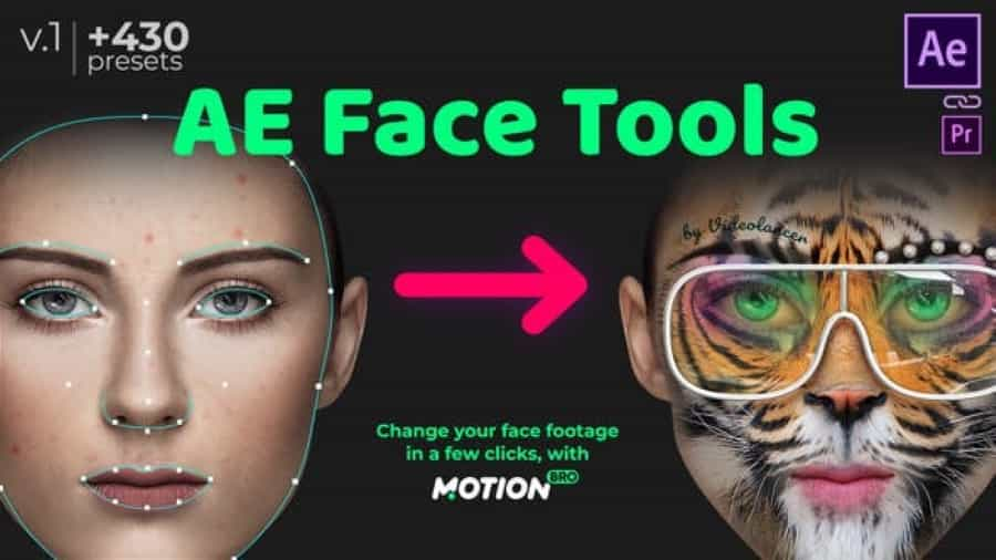 [Special] AE Face Tools Videohive 24958166