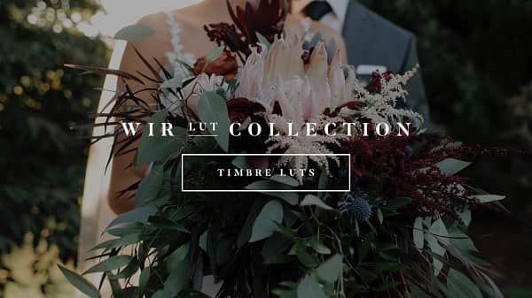 White In Revery – Timbre LUTs