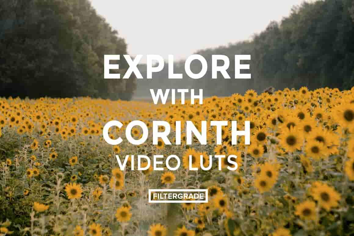 FilterGrade Explore with Corinth Suarez Video LUTs