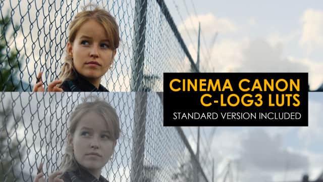 Cinema Canon C-Log3 And Standard Luts